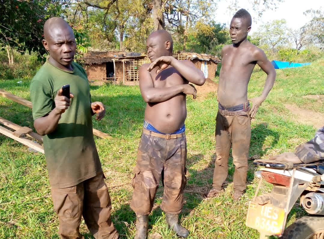TENSIONS OVER BUGOMA FOREST DEPLETION INCREASE AS FORCES FROM HOIMA SUGAR FACTORY AND NFA FIGHT OVER ILLEGAL LOGGING
