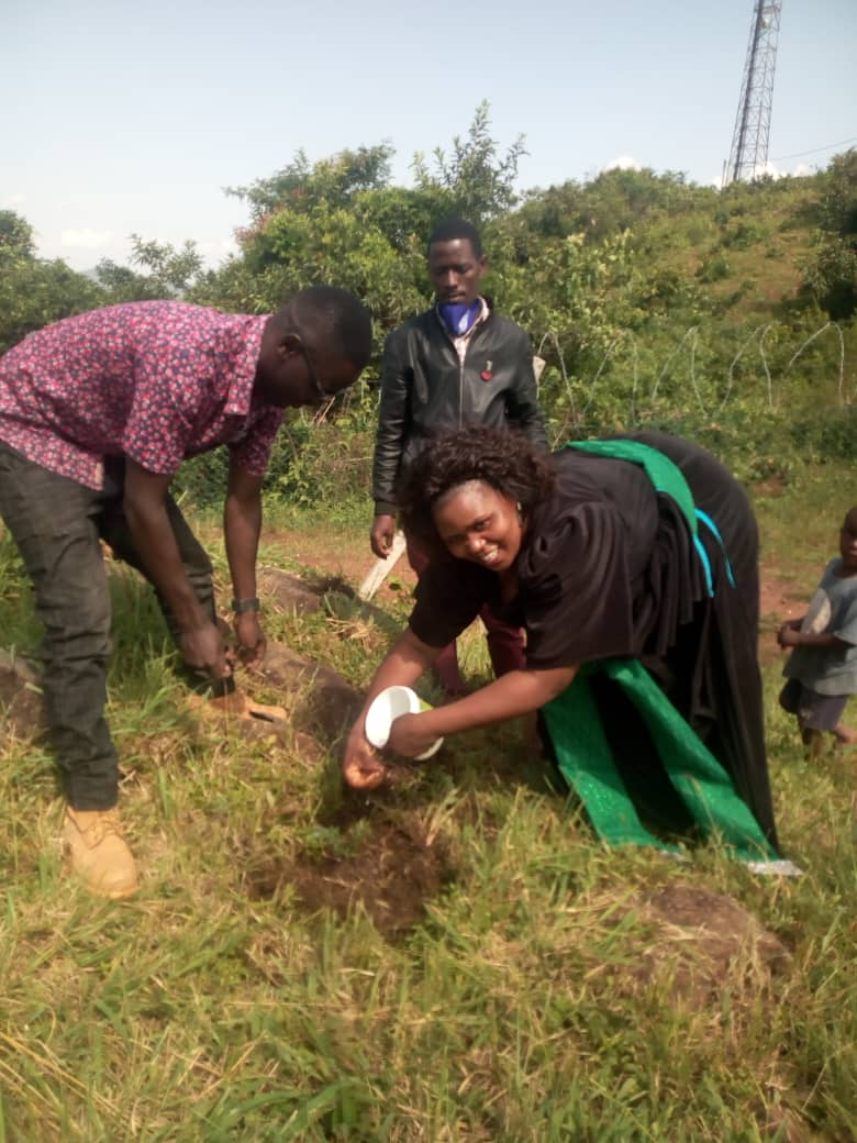 KIBOGA WOMAN MP GIVES TREE SEEDLINGS TO COMMUNITY GREEN RADIO AS THE WORLD MARKS WORLD ENVIRONMENT DAY