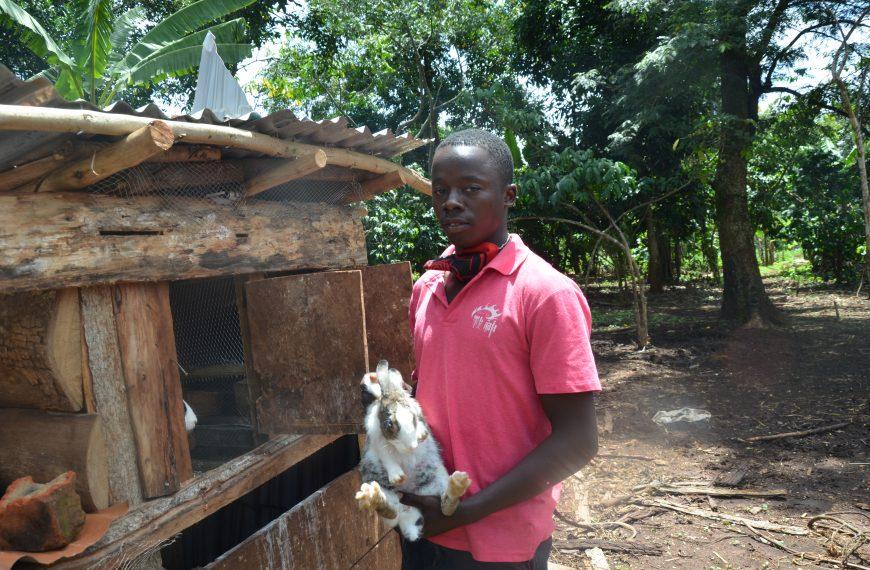 Community Green Radio motivated me to start rearing rabbits-Sserwada